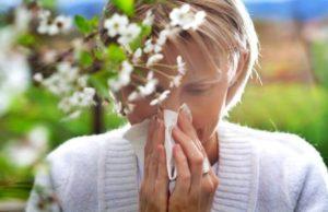 весенние аллергены